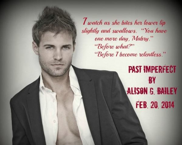 past imperfect teaser1
